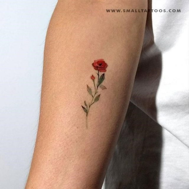 red rose temporary tattoo 1024×1024
