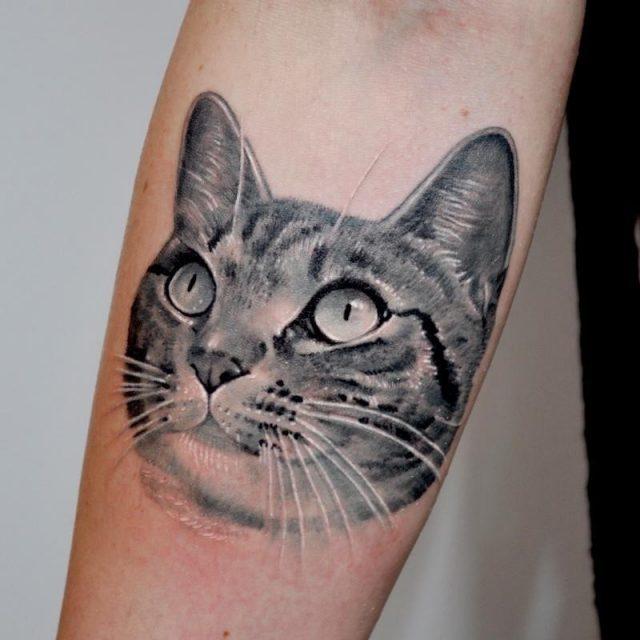 12 cat tattoo portrait