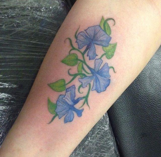 16a1ad44a7e20641a609169fe27a0b14  sweet pea tattoo ideas sweet pea tattoos