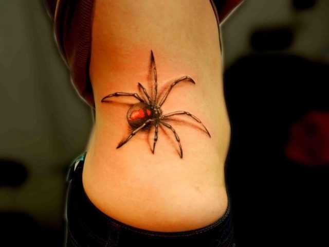 3D Spider Tattoo Pictures 1024×768