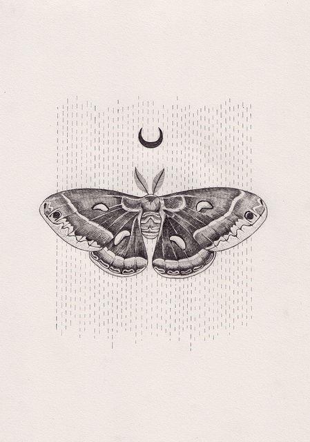 3df7bd3699e4ed100e3799f9e06901e5  moth tattoo design luna moth tattoo