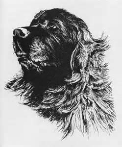 50ccf5828cc06bf4110500d7a8ebd58b  newfoundland dogs art