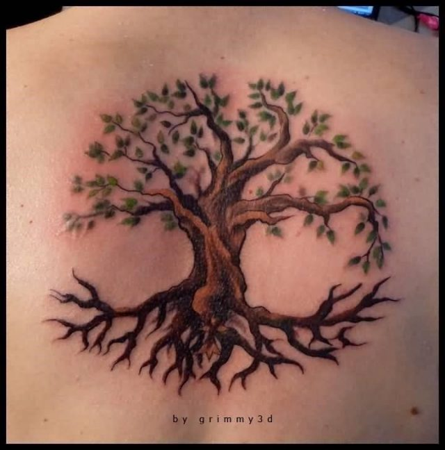 Attractive Tree Of Life With Large Trunk Tattoo On Upper Back