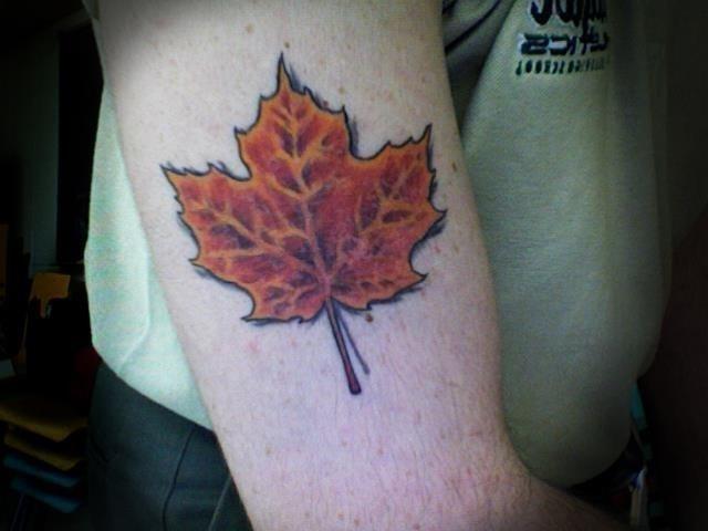 Canada Maple Leaf Tattoo On Bicep