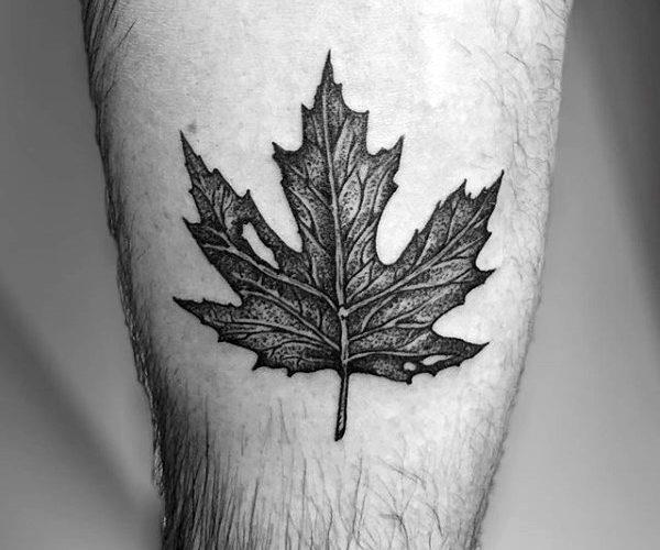 Detailed maple leaf 600×500