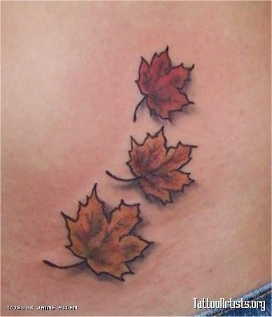 Img152695 Maple Leaves 6 27 08