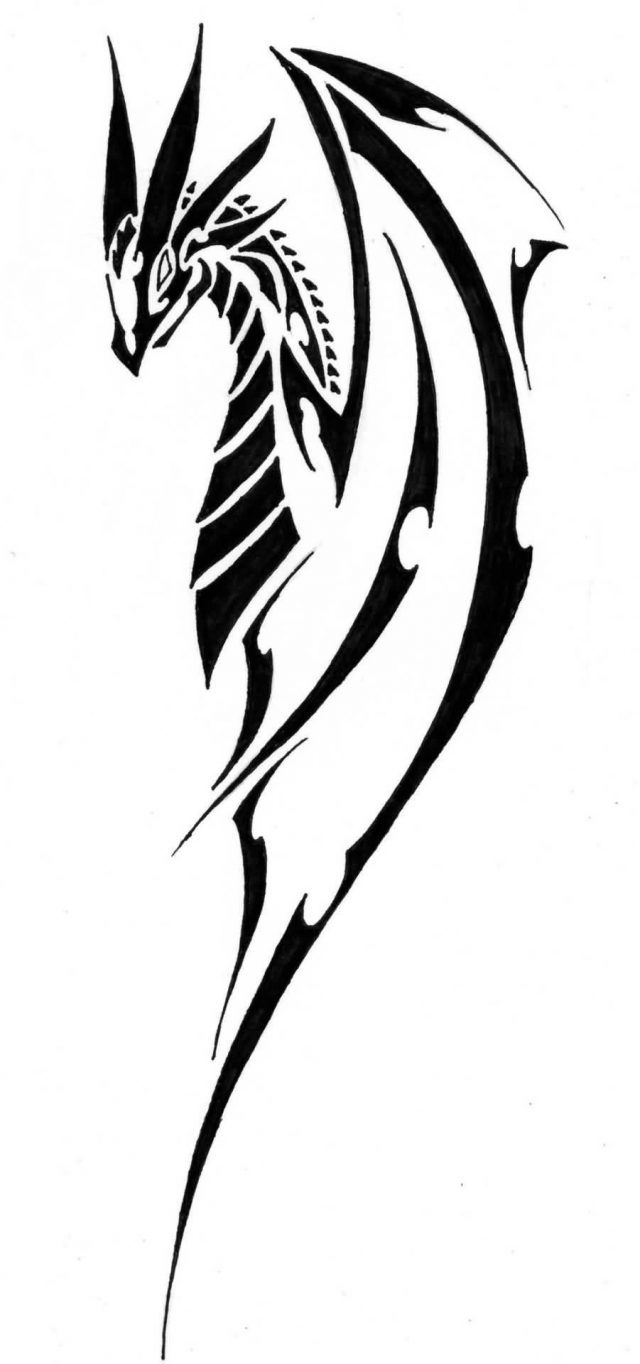 Nice Tribal Dragon Tattoo Design