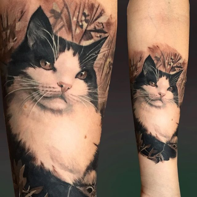 Realistic Cat Tattoo on Arm by Matteo Pasqualin
