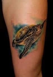 Turtle Tattoo Meaning 12