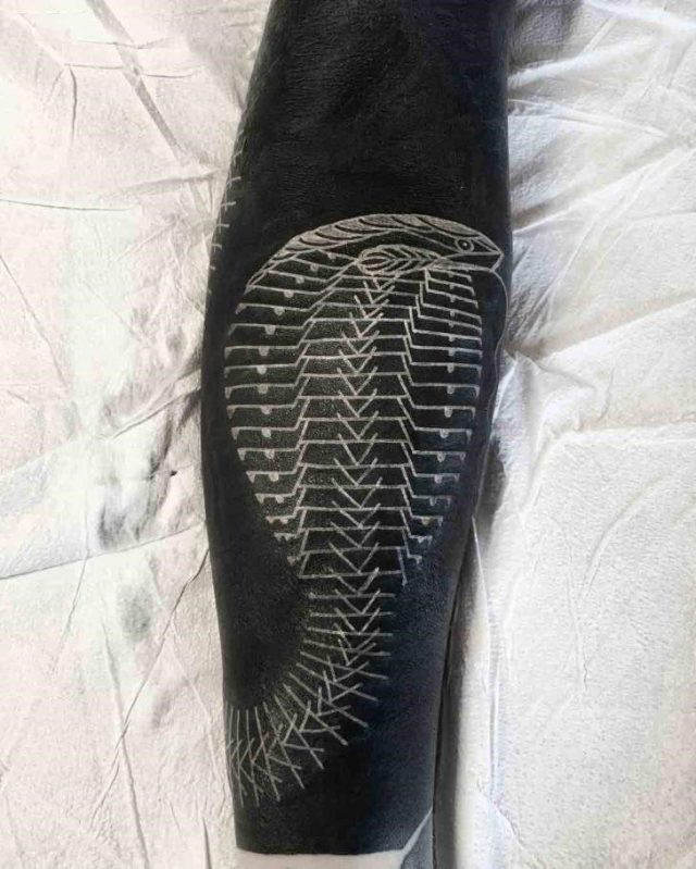 White Cobra Tattoo by Scott Campbell 728×909