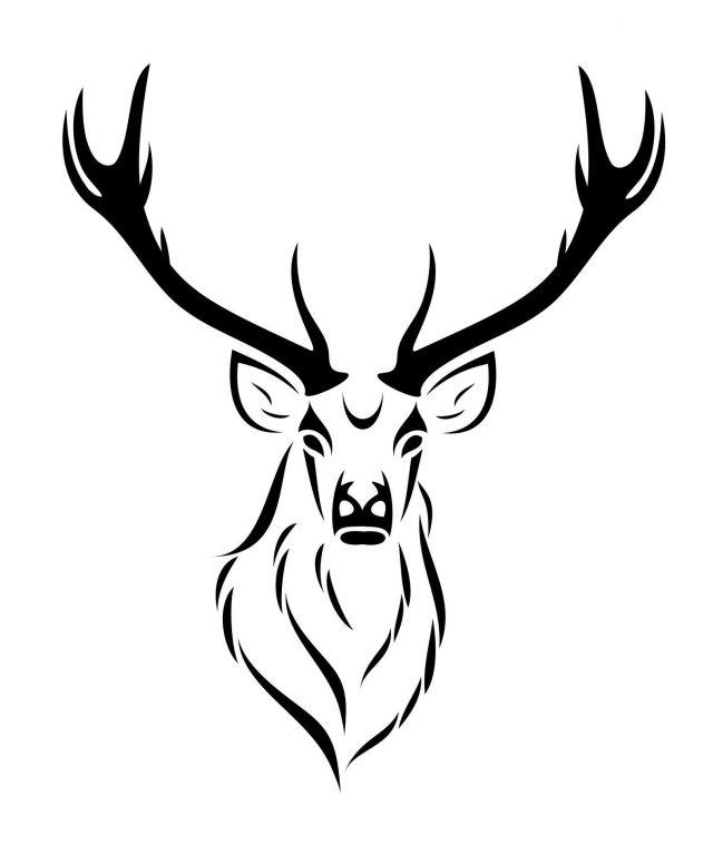 Deer skull drawing 110650 deer skull tattoo designs deer skull tattoo