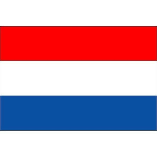 Dutch flag temporary tattoos