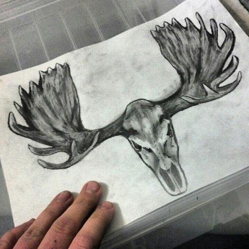 Fbc94934157adffa3e5c521a302204ce  old frames moose skull tattoo