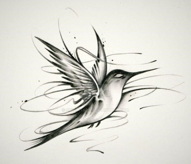 Hummingbird tattoo drawing 29