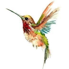 Hummingbird tattoo drawing 54