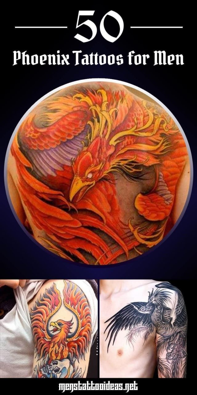 Phoenix tattoo pinterest share