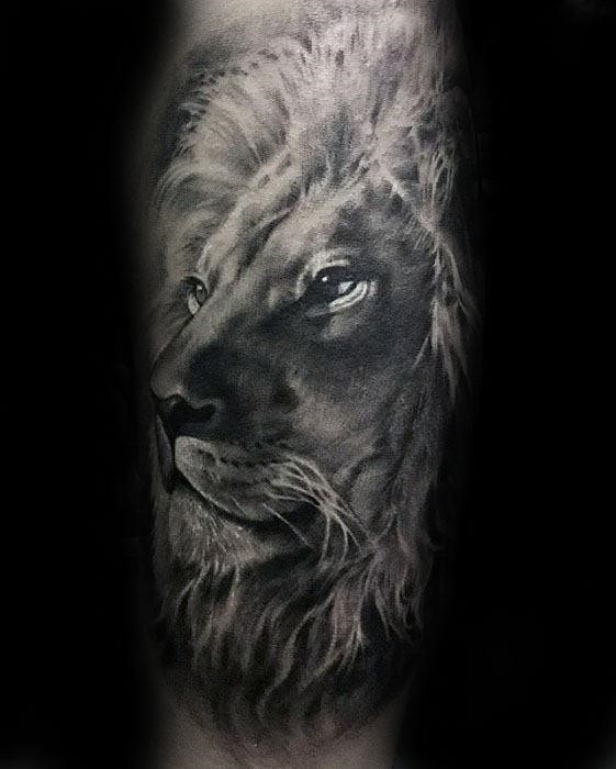 Shaded realistic male tattoo of lion on forearms