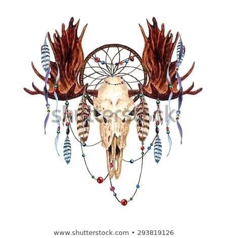 Stock vector watercolor moose skull feathers dreamcatcher beaded ribbons isolated on white background boho 293819126