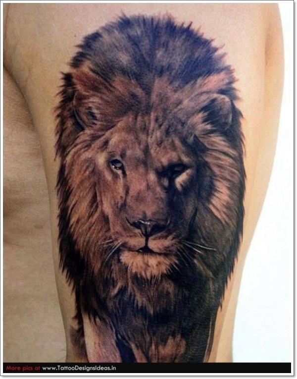 T1 Lion Tattoos animal 238