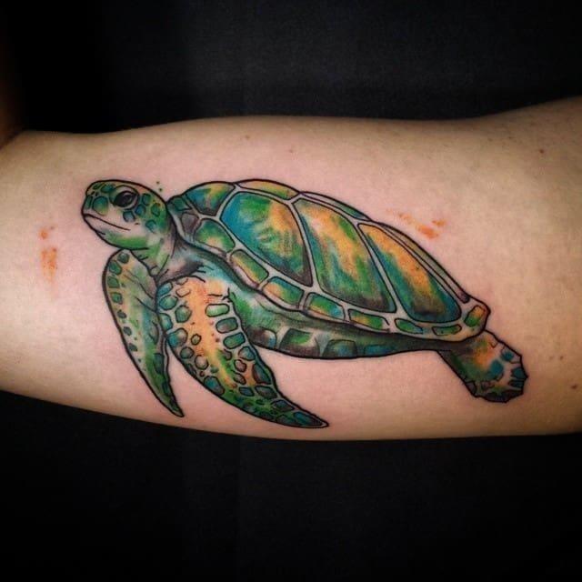 Turtle tattoo 19